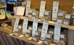 \森のコーヒーの生豆、販売しています/
