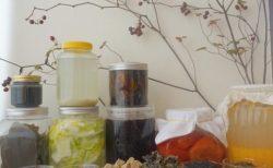 3/2月昼『スローな食材を楽しむ手作り発酵食~料理人安田花織さんを迎えて vol.2』