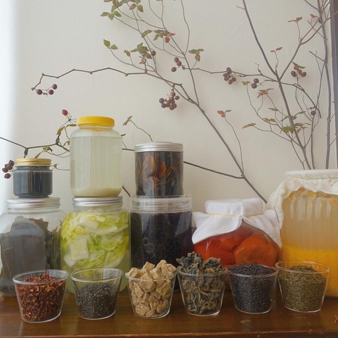 *10/7月昼『スローな食材を楽しむ手作り発酵食~料理人安田花織さんを迎えて』
