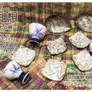 10/11金~16水『 風知想~うつわと織~早川紫野 個展vol.7 』
