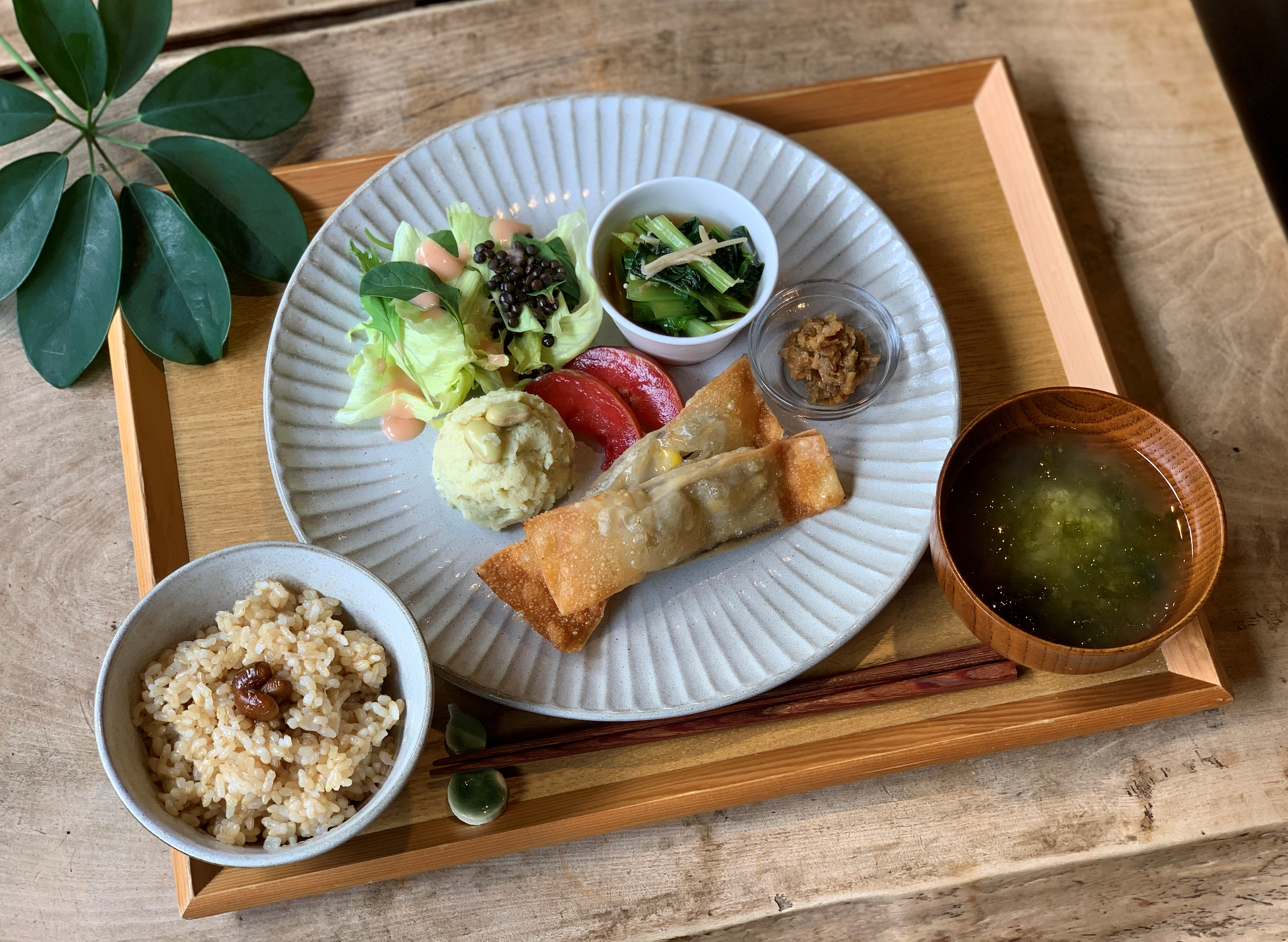 8月のヴィ―ガンスロープレート~茄子の揚げ春巻き~玄米練り味噌ほか